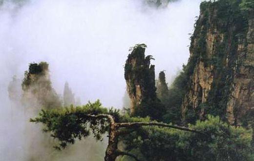 大围山国家森林公园位于湖南省浏阳市东北部,距省会长沙148公里.